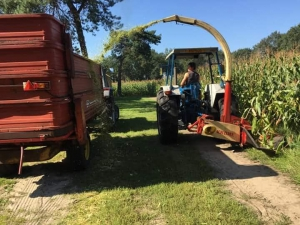 Historische Maishakseldagen Waleuk Waalwijk