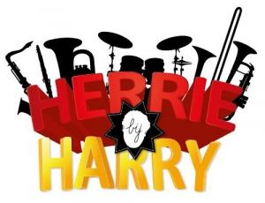 Herrie bij Harry
